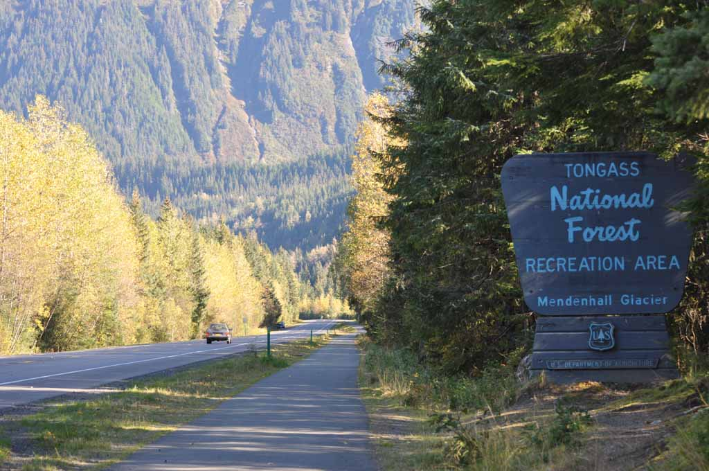 Tongass National Forest sign and fall colors.